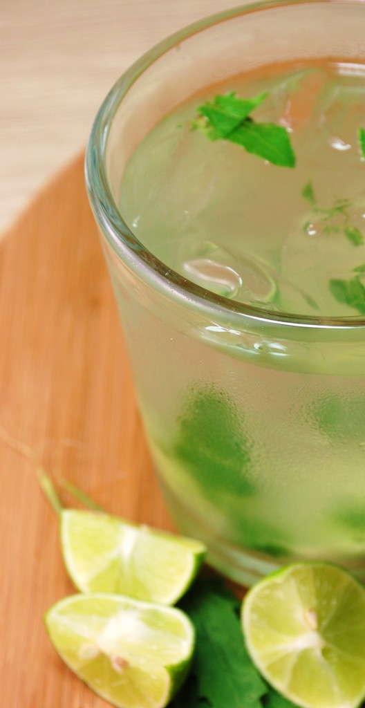 tequila epazote limeade 056 528x1024 Tequila Epazote Limeade  beverages