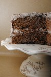 chocolate  tres leches cake 067
