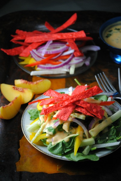jicama tortilla salad with peach dressing 0371 Jícama Tortilla Salad With Peach Dressing salsas dips salads mexican lenten recipes holiday recipes dressings dinners