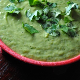avocado tomatillo salsa 019~1