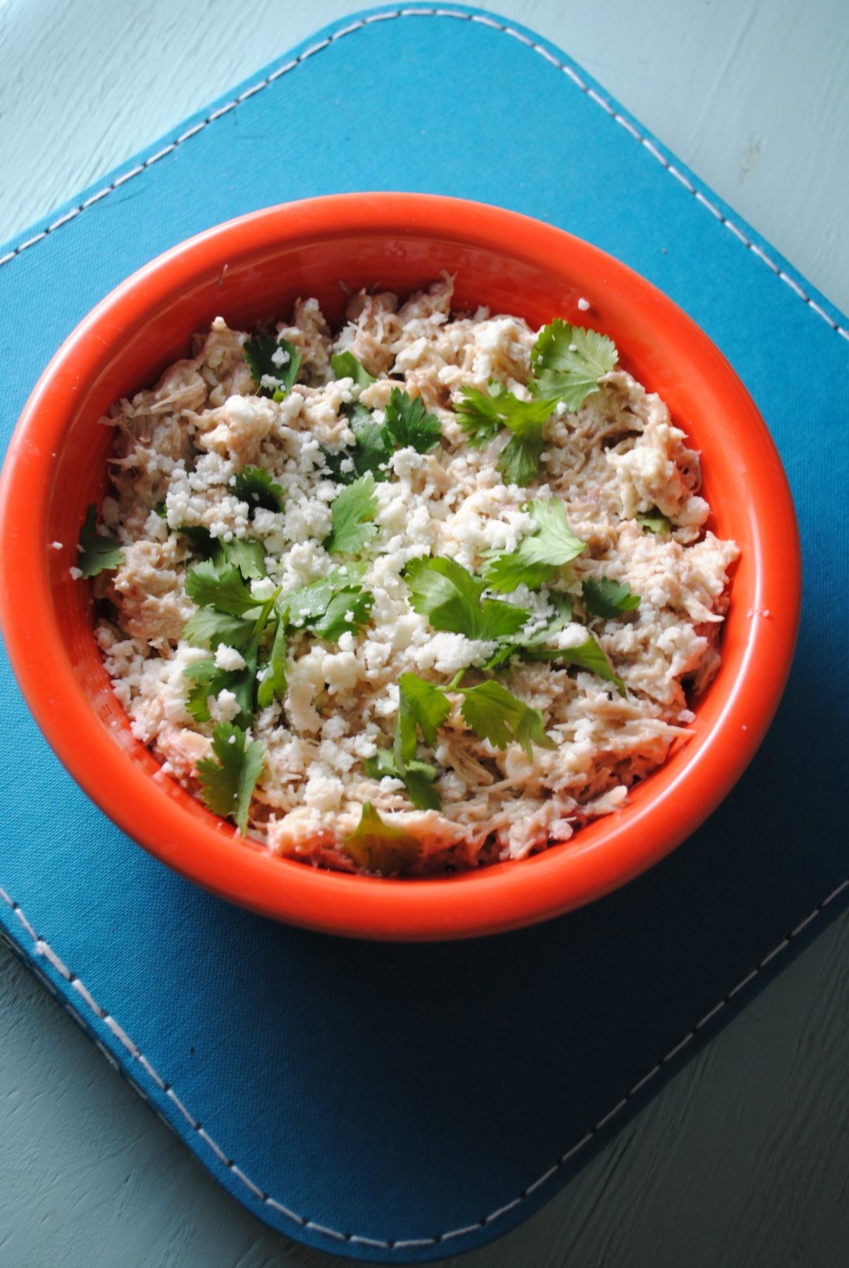 chicken-tomatillo-empanada-filling-VianneyRodriguez