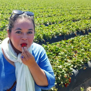 California Strawberries Farm Tour & Culinary Event