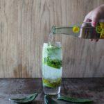 Nopal Soda (Cactus Soda)