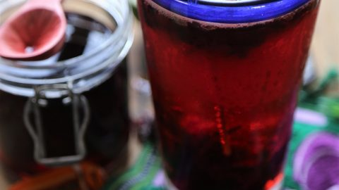 HOW TO MAKE HIBISCUS BEER